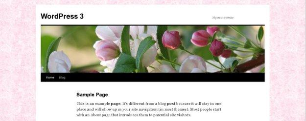 Custom Header for WordPress Website