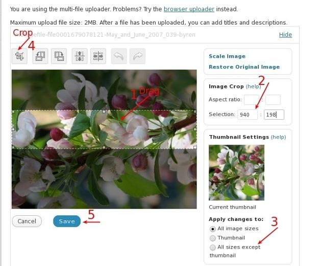WordPress Crop Image