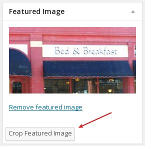 crop featured image button