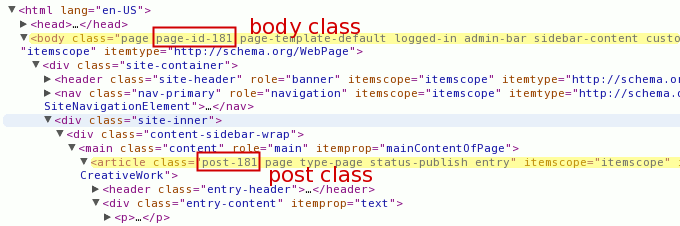 view source html on page or post